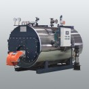WNS Pressurized Gas-Oil Hot Water Boiler