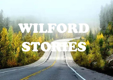 [Professional Manufacturing Industrial Boiler]Wilford stories