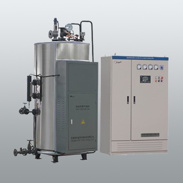 LDR split electric steam boiler